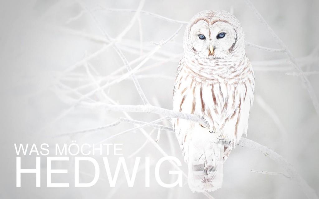 was_möchte_hedwig
