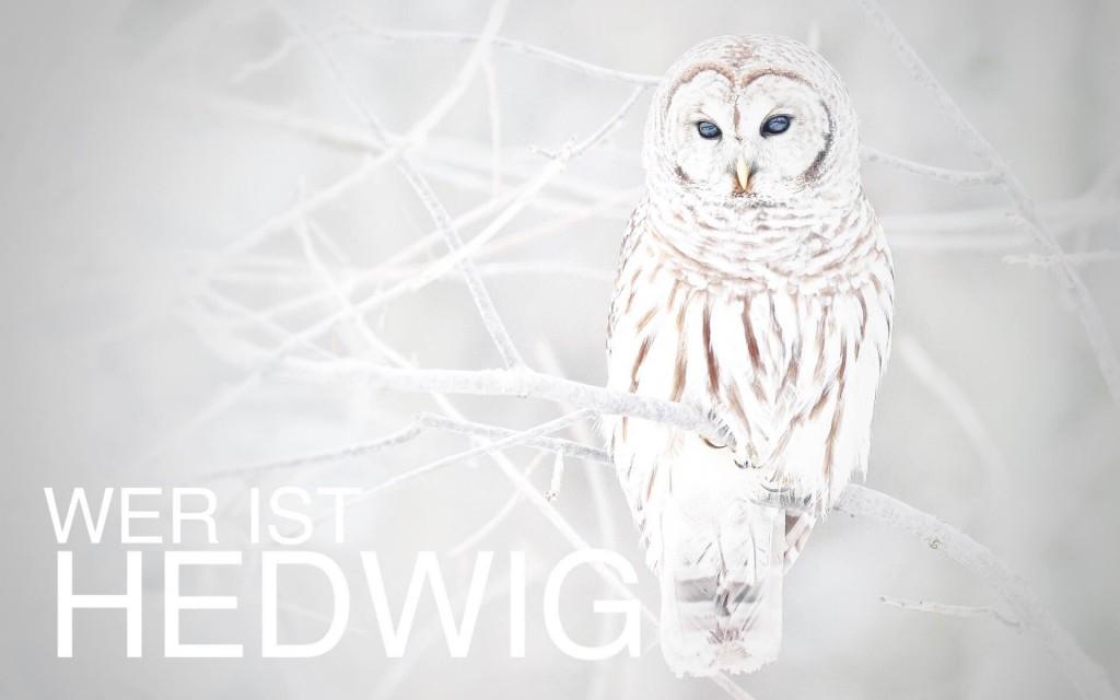 wer_ist_hedwig